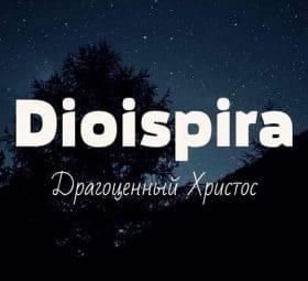 Драгоценный Христос - Dioispira