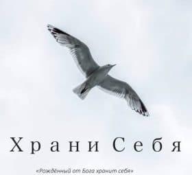 Храни себя - Пётр Бальжик